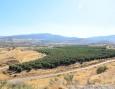 Vista desde el Parque Nacional Tel Hazor