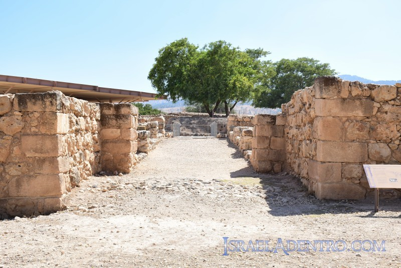 Parque Nacional Tel Hazor